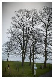 2012_Stranden-02